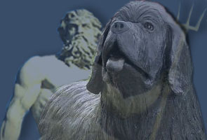 Welcome to Poseidon Newfoundlands